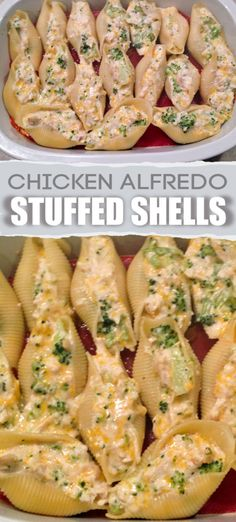 Chicken broccoli Alfredo stuffed shells is an easy pasta recipe the entire family will love. Double the recipe and freeze for an extra weeknight dinner. dinner recipes for family with kids Chicken Alfredo Stuffed Shells Recipe Chicken Broccoli Alfredo Stuffed Shells Recipe, Chicken Stuffed Shells, Broccoli Chicken, Easy Stuffed Shells, Recipe For Stuffed Shells, Recipe Chicken, Ricotta Stuffed Shells, Alfredo Chicken Pasta, Pasta Dishes With Chicken