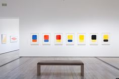 Ellsworth Kelly is having an LA moment. First his collection was used to inaugurate Ellsworth Kelly, Black And White Words, Josef Albers, Plant Drawing, American Modern, Painting Inspiration, Light Up, Color Pop, Contemporary Art