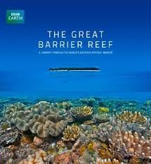 """""""the great barrier reef from national geographic""""的图片搜索结果"""