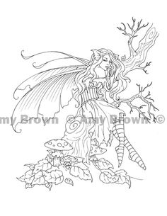 ORIGINAL ART  Ink Drawings  Amy Brown Fairy Art  The Official