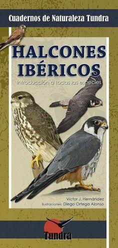 Cuaderno de Halcones Ibéricos. Tundra Ediciones.
