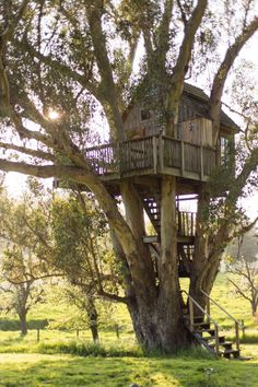 Image result for treehouse