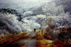 Wintermärchen Hiddensee-Muthesius Haus (  Eckart Muthesius: ) von Robert Ott