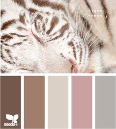 Kleuren Tiger Tones