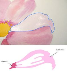 Paint Draw Paint: A Cosmos Flower | Nice walkthru tutorial of combining wet-on-wet & wet-on-dry techniques.