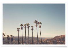Hollywood Hills - Catherine McDonald - Premium Poster