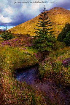 Beauty all Around, Scotland by Jenny Rainbow on Flickr.