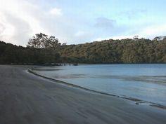 Stewart Island Rakiura Track - Rakiura National Park - Wikipedia New Age, Forests, National Parks, Track, Island, Mountains, Water, Outdoor, Gripe Water