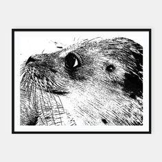 sea lion Plakaty w ramie