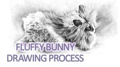 This time lapse video shows how I made this pencil drawing of my bunny, Fluffy.