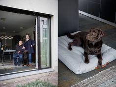 Leonard, Maren & Arthur (on Cloud 7 Dog Bed Dream)