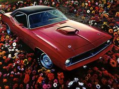 1970 Plymouth Hemi 'Cuda..I got to drive one from Tulsa to somewhere in MO...it's a wonder I didn't get a ticket...thank you old man for slowing me down.