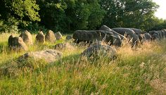 Hunebed, prehistoric burial - The Netherlands.