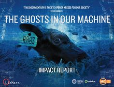 You maydownloadand share this 34-page full-colour impact report about the effectiveness ofThe Ghosts In Our Machine documentary. Produced by Liz Marshall /LizMars Productions, in partnership with the US-based nonprofit organization theHumane Research Council(now rebranded as Faunalytics),designed by Deb Ozarko, and funded bythe Bertha BRITDOC Connect Fund. Bertha/BRITDOC is delighted to have supported the global community …