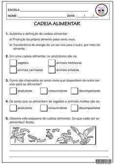 Home Schooling, Science Activities, Science And Nature, Homeschool, Journal, Education, Sos Professor, Costa, Sight Word Activities