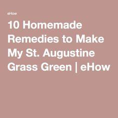 10 Homemade Remedies to Make My St. St Augustine Grass, Green Grass, Take Care, Lawn, Seeds, Remedies, Homemade, How To Make, Home Made