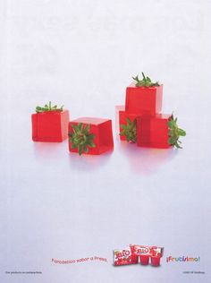 Nir Adar | Food Stylist and an Artist.