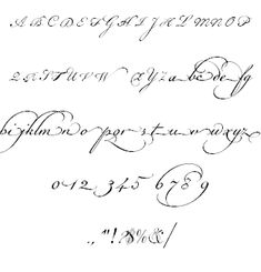 Image for Champignon font