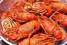 Lagosta Suada - Portugal - Lobster in Tomato and wine sauce recipe on Food52