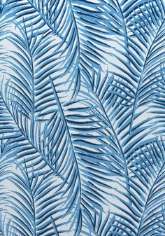 WEST PALM WOVEN, Blue on White, W80562, Collection Oasis from Thibaut