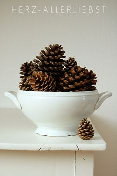 More pine cones! Can't get enough of them ;-)