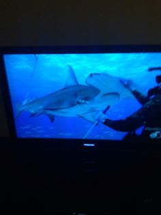 Shark Week is Life!! #Morning #Coffee #DiscoveryChannel #Summer #Tradition #90sKid <JR> ✌️
