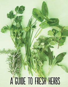 Fresh herbs--a guide to their characteristics and what kinds of foods to cook with them.