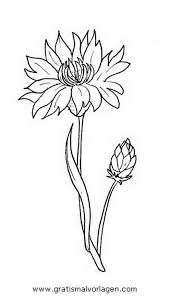 cornflower Flowers coloring pages Flower Coloring Pages, Coloring Book Pages, Animal Coloring Pages, 3d Pen Stencils, Stylo 3d, Glue Art, Drawing Sketches, Drawings, Butterfly Drawing