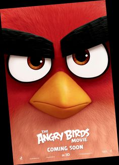 Free Download The Angry Birds Movie (2016) HDTV in HD-720p DVB with english subtitles hindi movie dvd