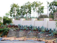Los Gatos Residence Terrace Garden by Zeterre Landscape Architecture