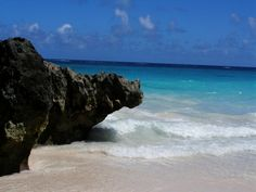 bermuda: i was born there, one day i will return.