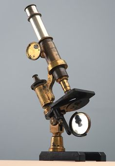 REAL Steampunk - DUMAIGE OF PARIS ANTIQUE BRASS MEDIUM COMPOUND MONOCULAR MICROSCOPE, Circa 1885 | eBay