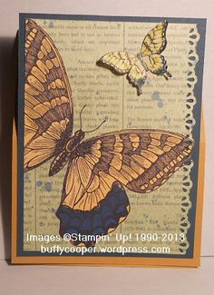 Swallowtail - MDS meets paper and ink