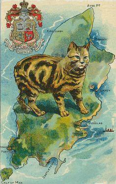 1910 Postcard - Manx Cat on the Isle of Man