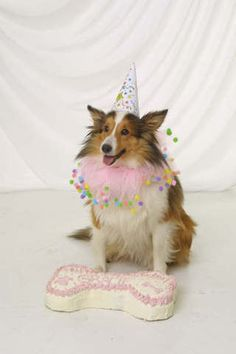 Sweet Birthday girl!