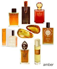 Exotic Amber: Fiore d'Ambra, Akkad, Ambre Precieux, Ambra Nera, Ambre Russe, O Hira, and Ambre 114. #niche #perfume #luckyscent