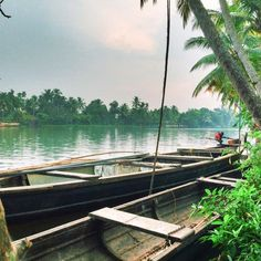 A Goa and Kerala itinerary for hipsters