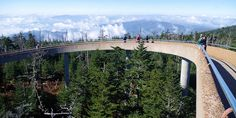 See the views from Clingmans Dome, the highest peak in Great Smoky Mountains National Park and in Tennessee, observation tower near Newfound Gap. Smoky Mountains Hiking, Nc Mountains, Great Smoky Mountains, Appalachian Mountains, Bryson City North Carolina, North Carolina Mountains, Mountain Photography, Night Photography, Scenic Photography