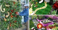 Aj na malom priestore môžete vykúzliť úžasné veci. Miesto na oddych, zábavu v kruhu rodiny alebo pestovanie okrasných či úžitkových rastlín.