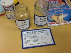 Polar Bears science experiment