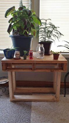 Pallet plant table
