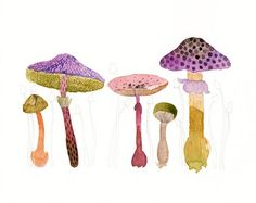 ORIGINAL Magic Mushrooms Watercolor Painting byillumino