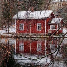 #tree_brilliance #pocket_trees #loves_united_finland #loves_finland #total_finland #tree_magic #thebestoffinland #fingerprintofgod #finland_frames #finland_photolovers #loves_tree_rural #suomi100vuotta #show_us_nature #fotocatchers #fiftyshades_of_nature #ig_world_colors #bella_shots #beautyofsuomi #lovelyfinland #natura_love_ #naturehippys #tv_aqua #igworldglobal #ig_myshots #water_brilliance #igscandinavia #global_beautiful_pictures #nature_brilliance #naturephotography