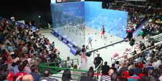 PSA Tour and National Federations Join together in Call For Urgent World Squash Changes