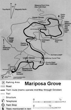 Map of Mariposa Grove of Giant Sequoias, Yosemite National Park