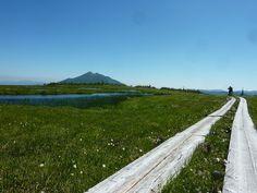 尾瀬・アヤメ平にて。Ayamedaira in Oze National Park, Japan.