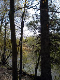 Oak Park Grand Ledge Michigan
