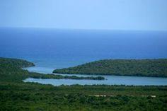 mosquito bay vieques puerto rico