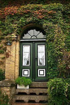 double green door with ivy