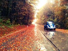 My VW and autumn leaves